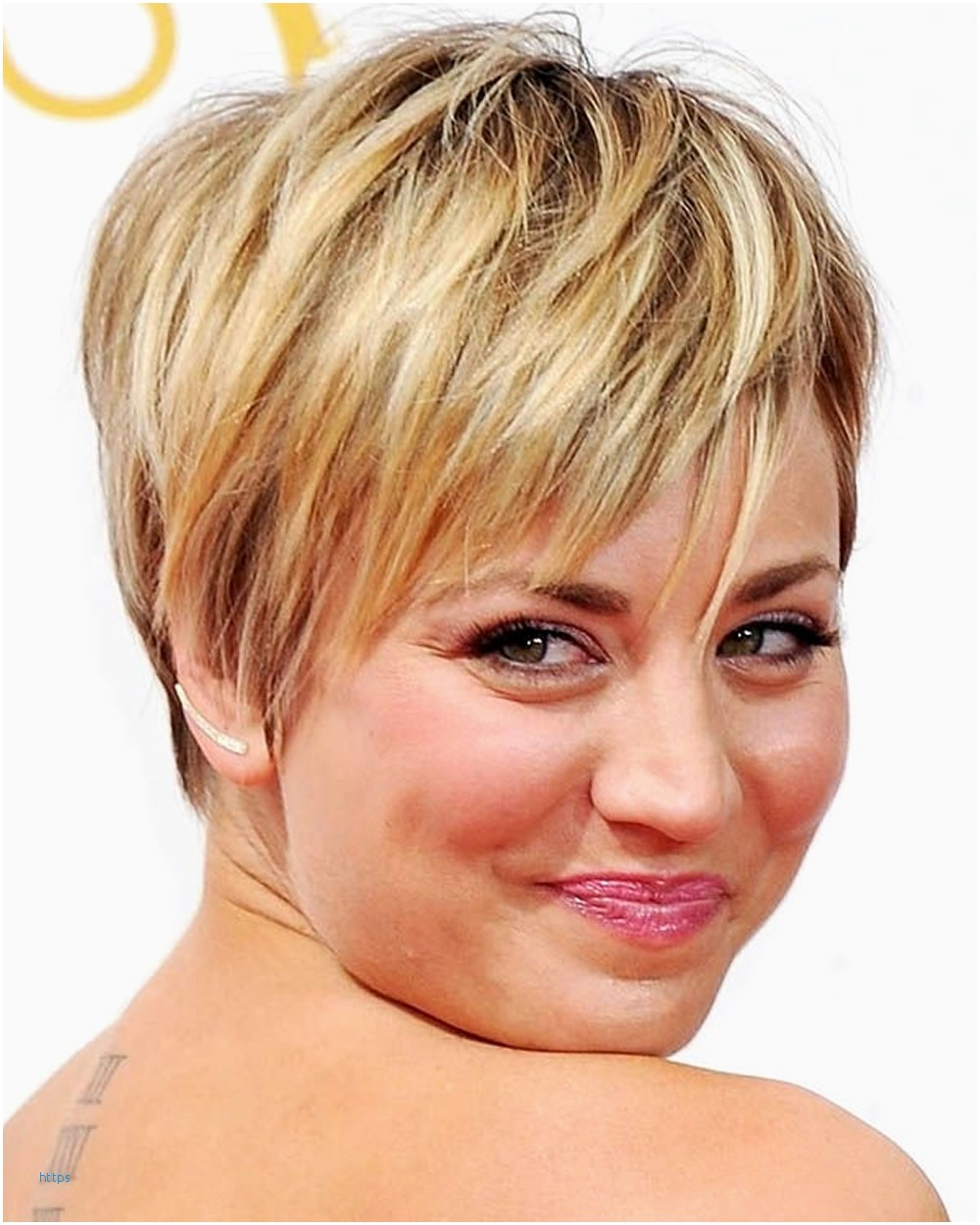 short hairstyles for round faces and thin hair New Pixie ...